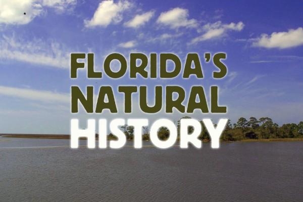 fla natural history