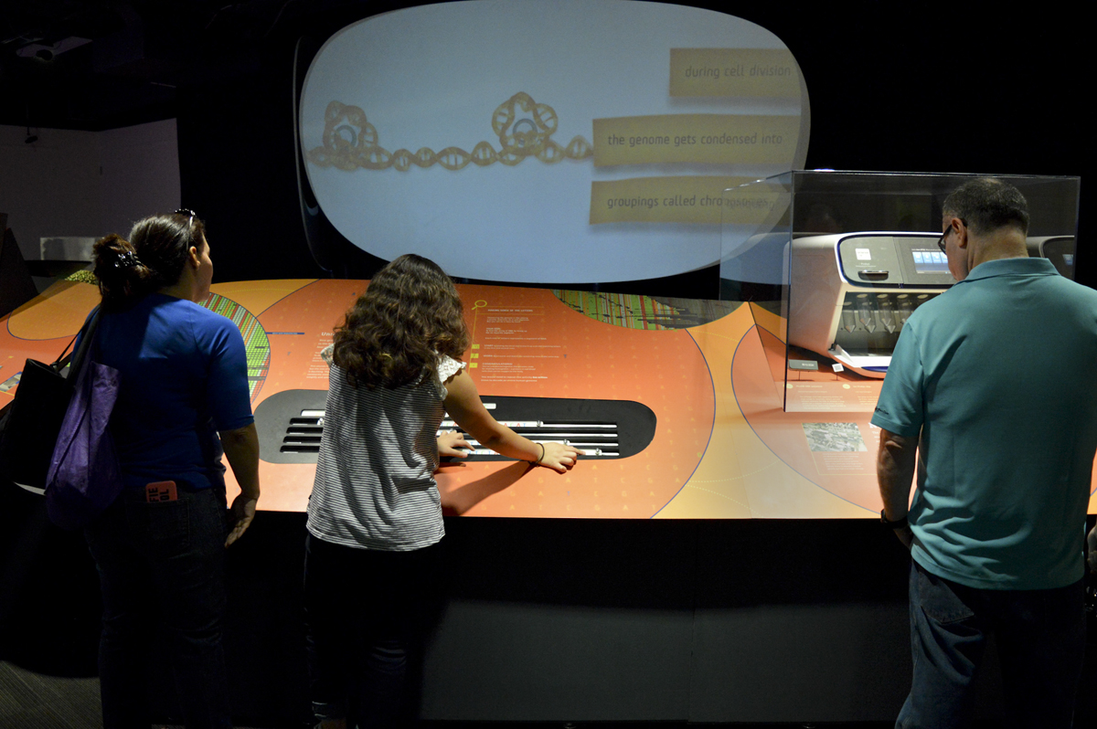 Genome: Unlocking Life's Code exhibit