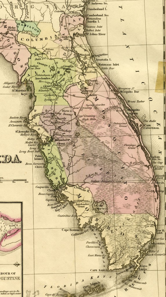 Vintage map showing Mosquito County