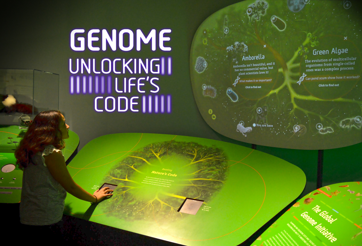 Inside Genome: Unlocking Life's Code