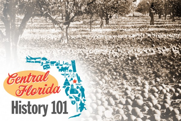 Black and white photo of citrus grove after the great freeze with logo for Central Florida History 101